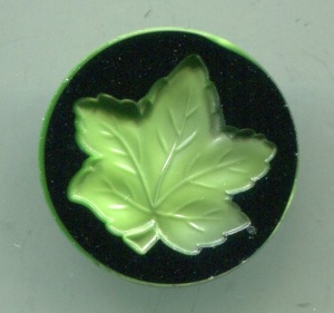 cased-impressed-leaf-640
